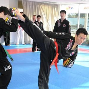 Jeolkwondo_96-500x500