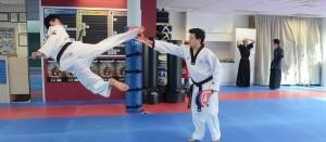 Taekwondo_07-300x131